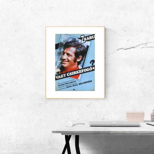 Zsaru vagy csirkefogó? filmplakát