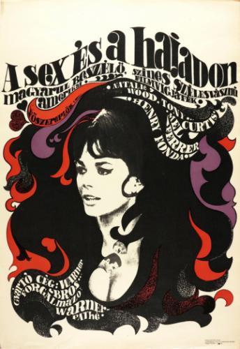 Szex és a hajadon filmplakát